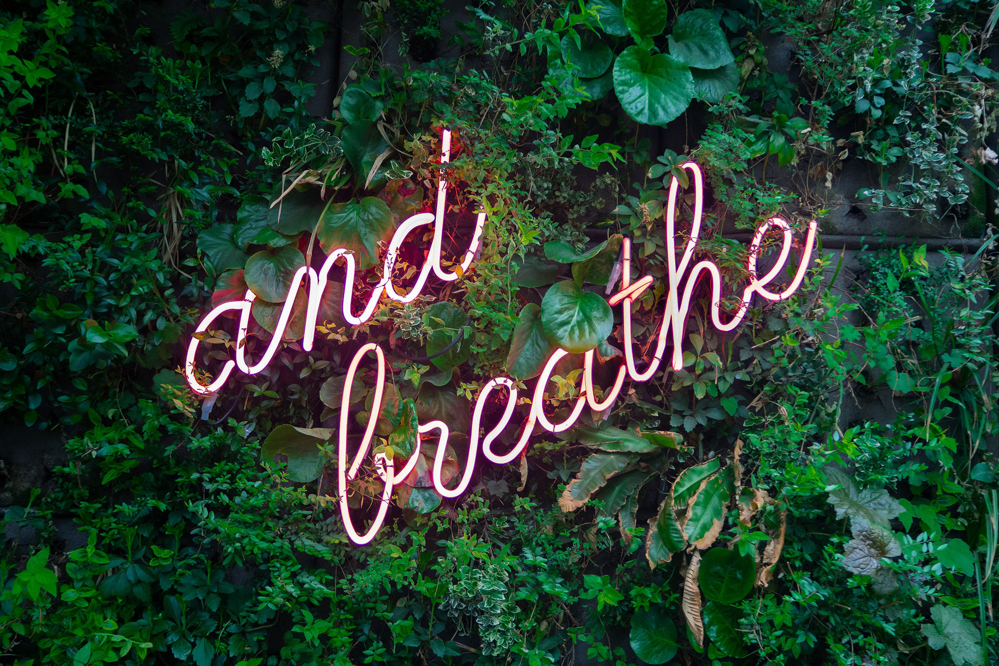 neon letters on green background reading 'and breathe'